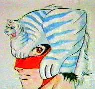 タイガー マスク フライング